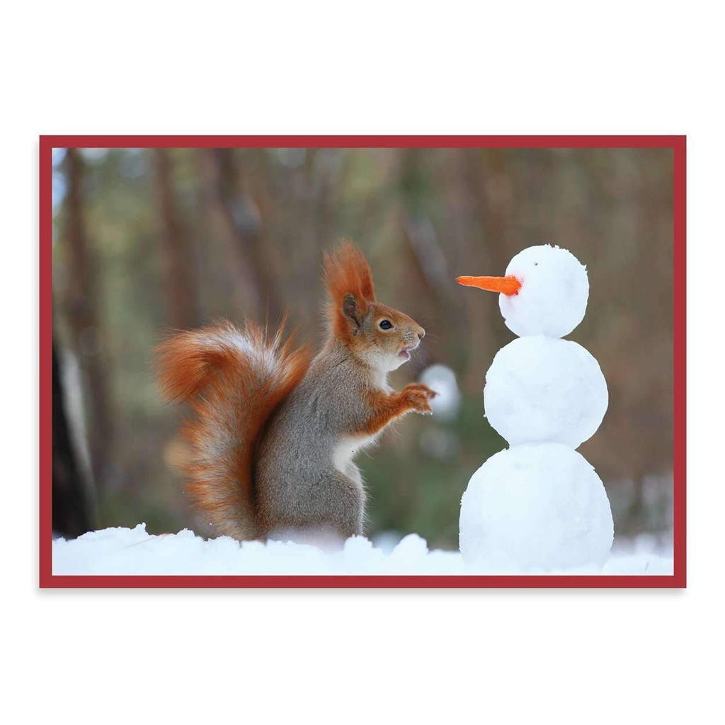 Snow Friends Half Notecards Holiday Notecards Galison