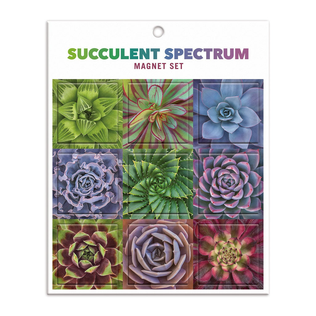 Succulent Spectrum Magnet Set Magnets Troy Litten Collection