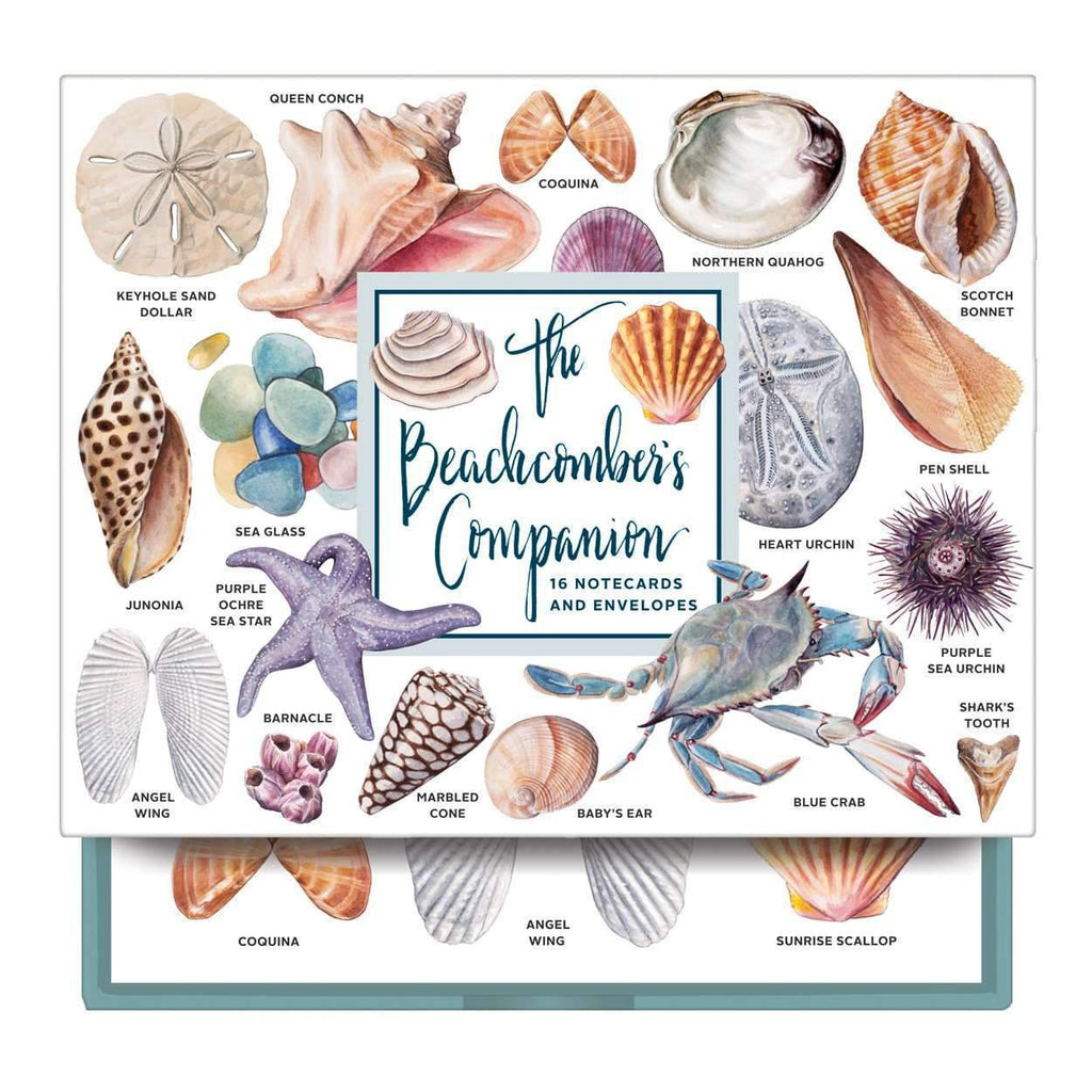The Beachcomber's Companion Greeting Assortment Notecards Greeting Cards Galison