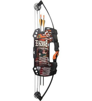 Barnett 1075 Banshee Intermediate Compound Bow