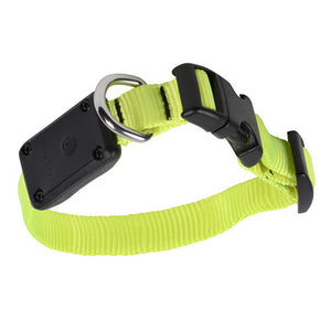 Nite Ize Nite Dawg LED Light Up Dog Collar XS Neon Yellow