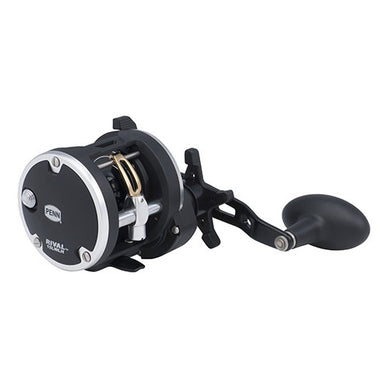 Penn Rival Level Wind Conventional Reel 15, 5.1:1 Gear Ratio, 2 Bearings, 29