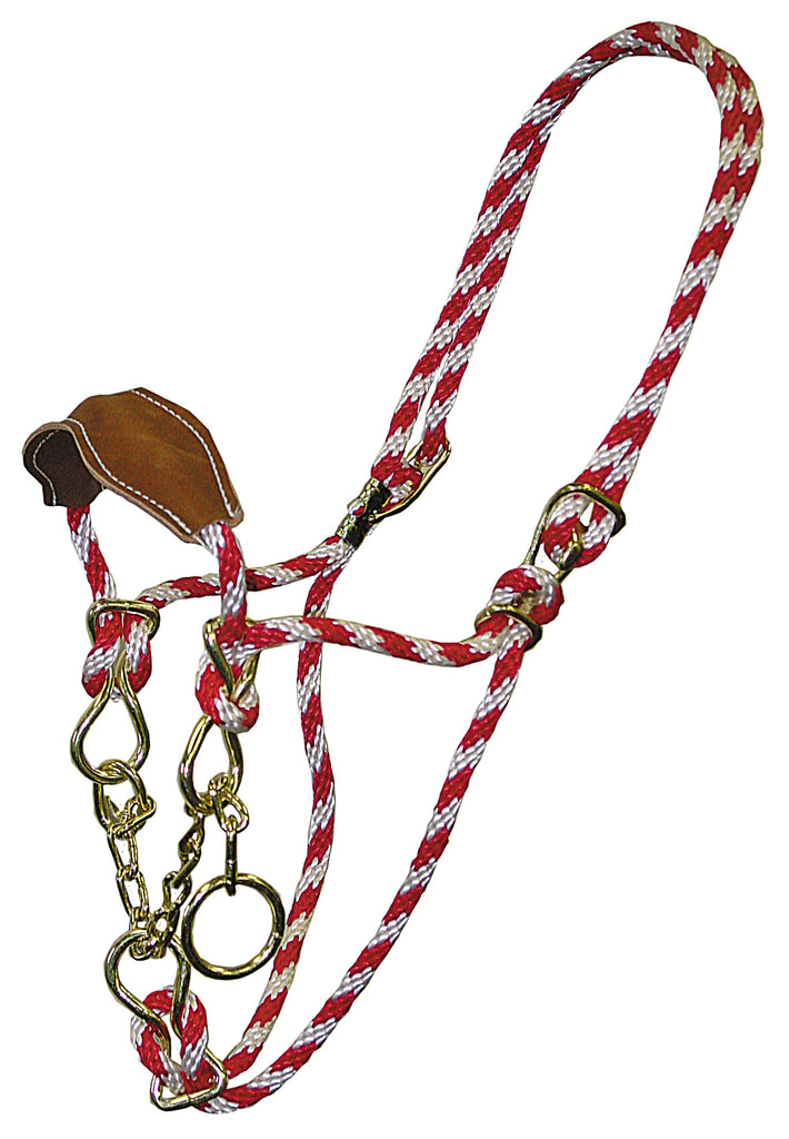 Poly Rope Cow Halter with Leather Noseband & Chain