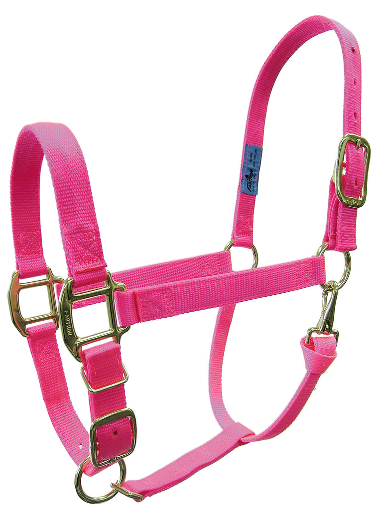 "3/4"" Hot Color Adjustable Nylon Halters"