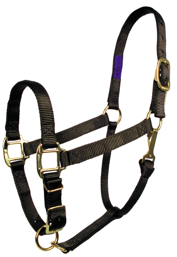 "1"" Adjustable 'Comfort Fit' Nylon Halters"