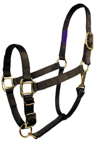 "3/4"" Adjustable 'Comfort Fit' Nylon Halters"
