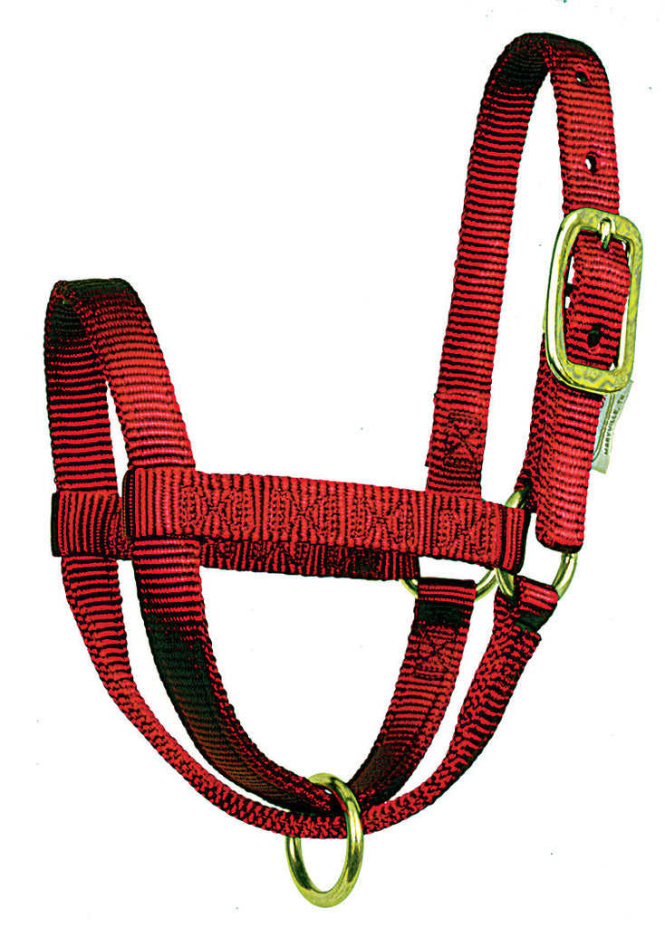 Calf Stall Halters