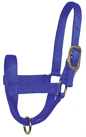 Yearling Stall Halters