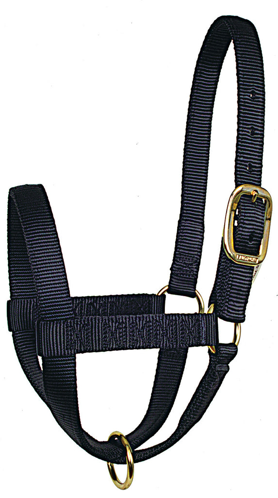 Cow Stall Halters