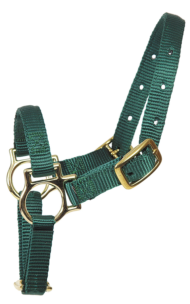 Sheep Nylon Halter