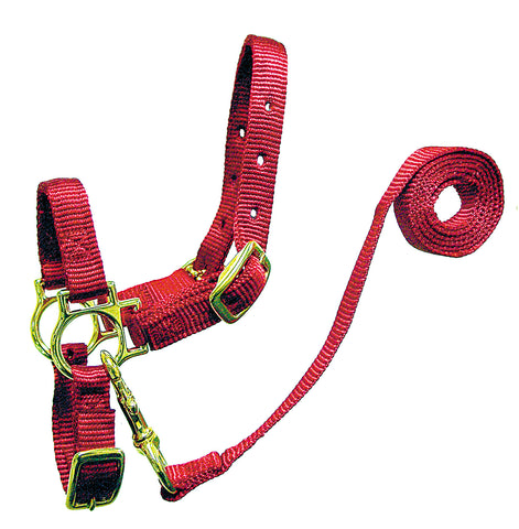 Sheep Deluxe Nylon Halter