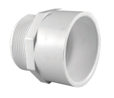 Charlotte Pipe  Schedule 40  PVC  Pipe Adapter
