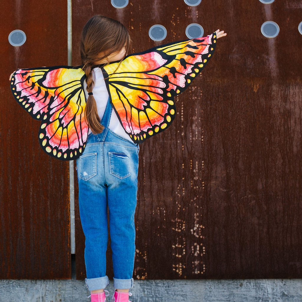 Make Your Own Butterfly Wings