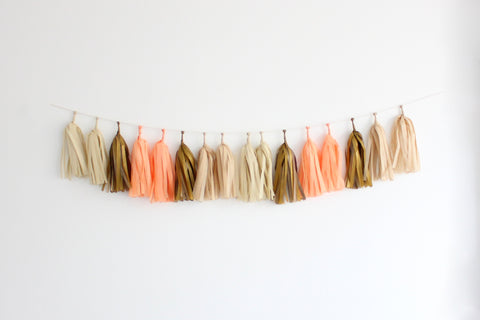 Tissue Paper Tassel Garland DIY Kit