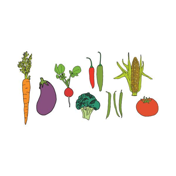 Farmers Market Tattoos Vegetable Party Packet (8-pack)