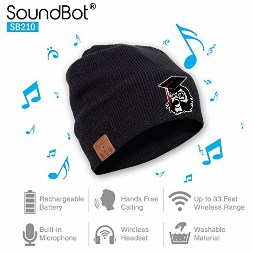 F.O.M.U. Soundbot Wireless Music Beanie