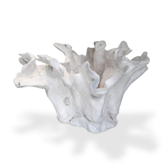 Bleached Root Bowl