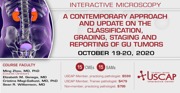 2020, October 19-20: A Contemporary Approach and Update on the Classification,  Grading, Staging and Reporting of GU Tumors