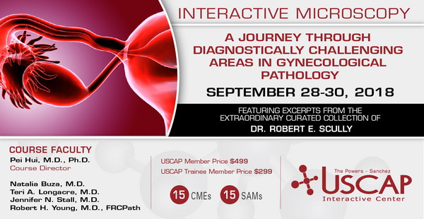 2018, Sept. 28-30: A Journey through Diagnostically Challenging Areas in Gynecologic Pathology