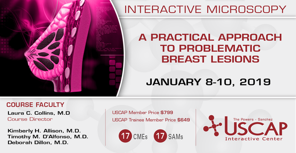2019, Jan. 8-10: A Practical Approach to Problematic Breast Lesions