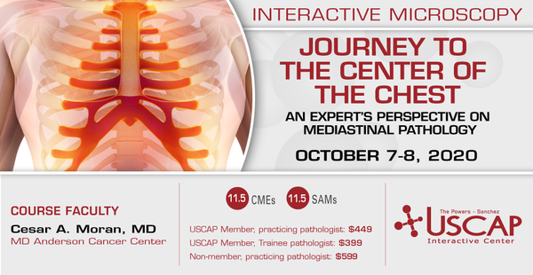 2020, October 7-8: Journey to the Center of the Chest: An expert's perspective on mediastinal pathology