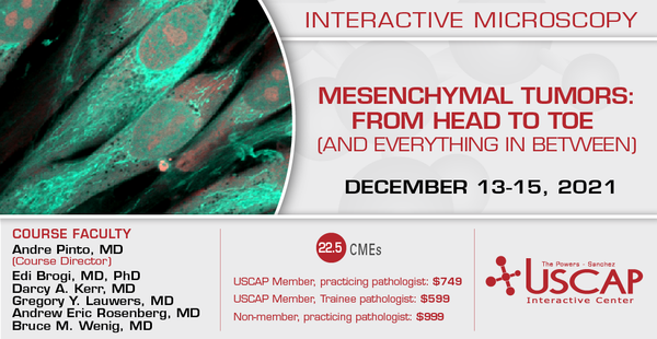 2021, December 13-15: Mesenchymal Tumors: From Head to Toe (and Everything in Between)