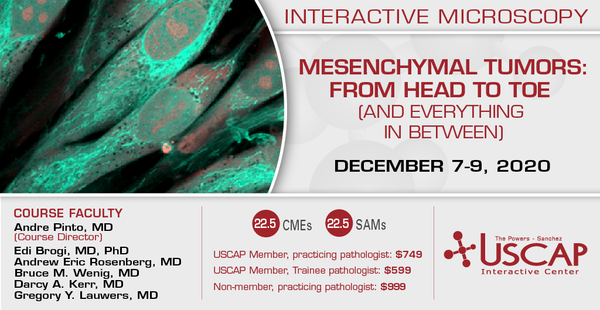 2020, December 7-9: Mesenchymal Tumors: From Head to Toe (and Everything in Between)