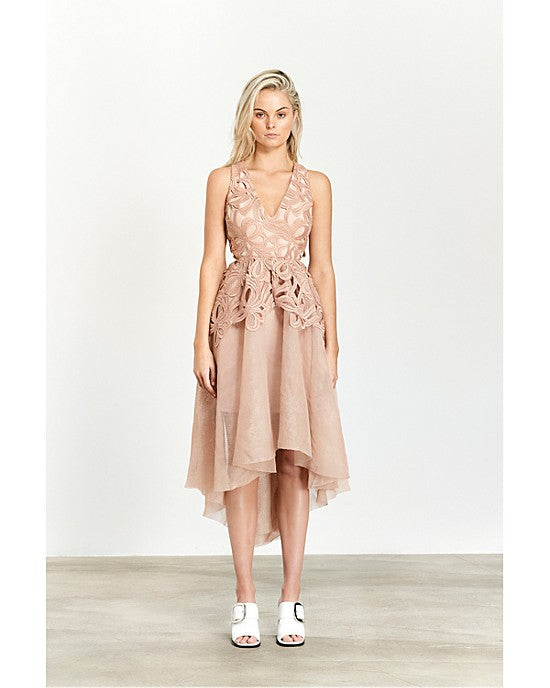 Muse Lace & Mesh Dress