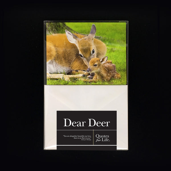 Dear Deer Note Cards - Quotes for Life