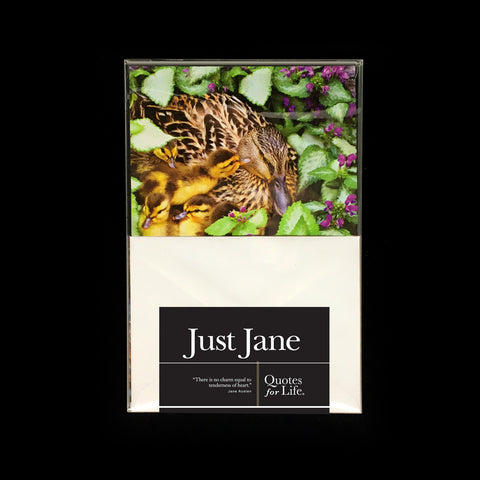 Just Jane Note Cards - Quotes for Life