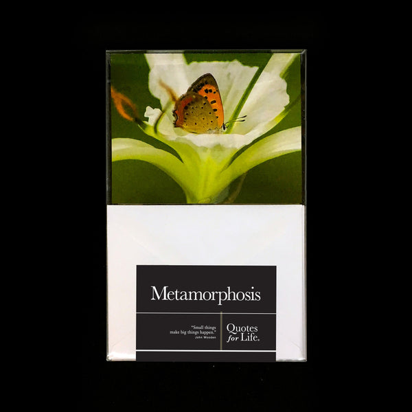 Metamorphosis Note Cards - Quotes for Life