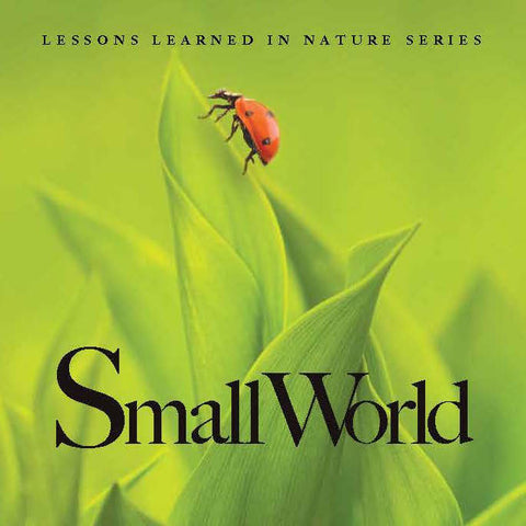 Small World: Lessons Learned in Nature
