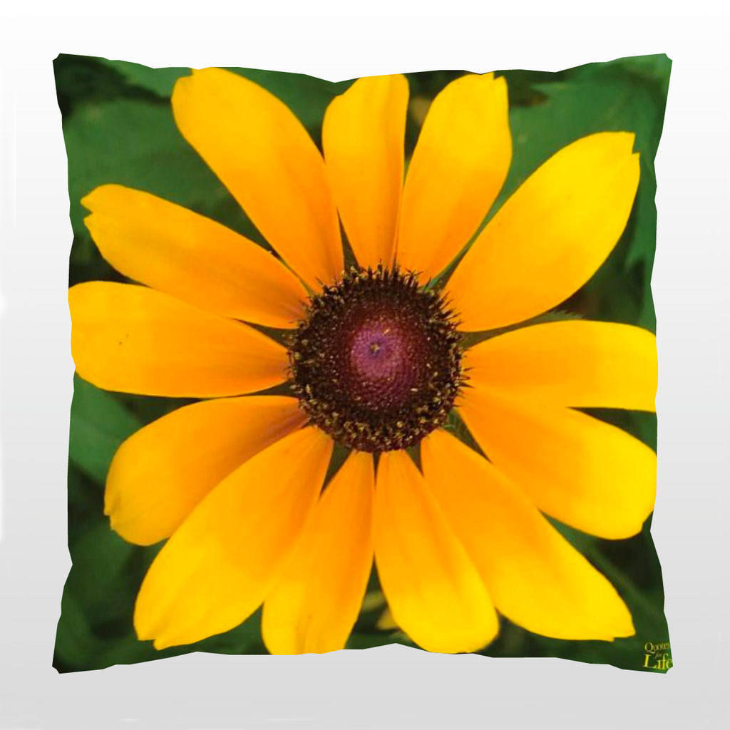 PILLOW PROVERB: Black-eyed Susan with an Indian Proverb - Quotes for Life