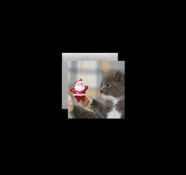 Gift Enclosure Cards: Holiday Cats - Quotes for Life