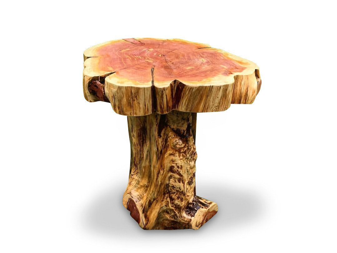 Knaughty Log Co - Knaughty Log Co - Stump Base Slab Top End Table - Night Stand
