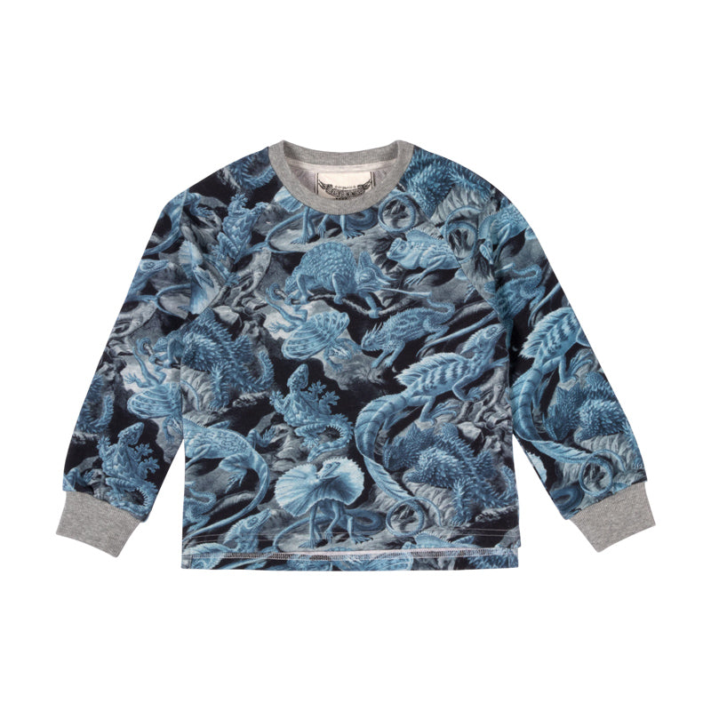 paper wings raglan sweater - full house