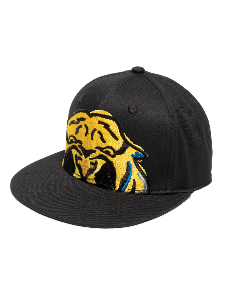 band of boys tiger cap