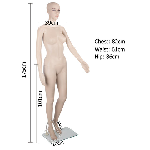 Full Body Female Mannequin Cloth Display Tailor Dressmaker Skin Tone 175cm