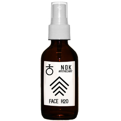 FACE H20 | Aloe + Rosewater Toner - The Nok Apothecary
