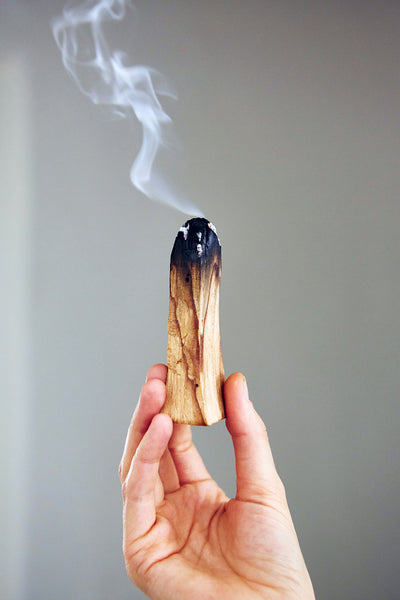 Palo Santo Wood - The Nok Apothecary