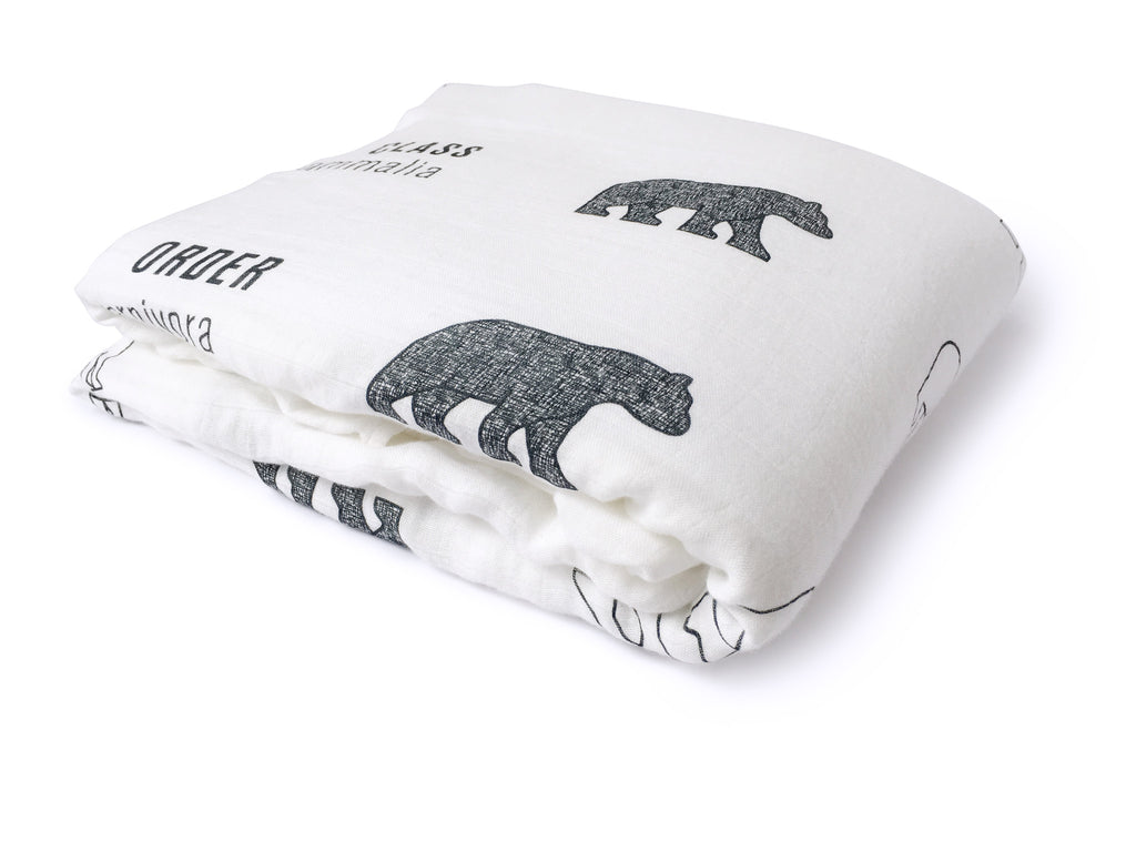 folded bamboo cotton taxonomy swaddle blanket