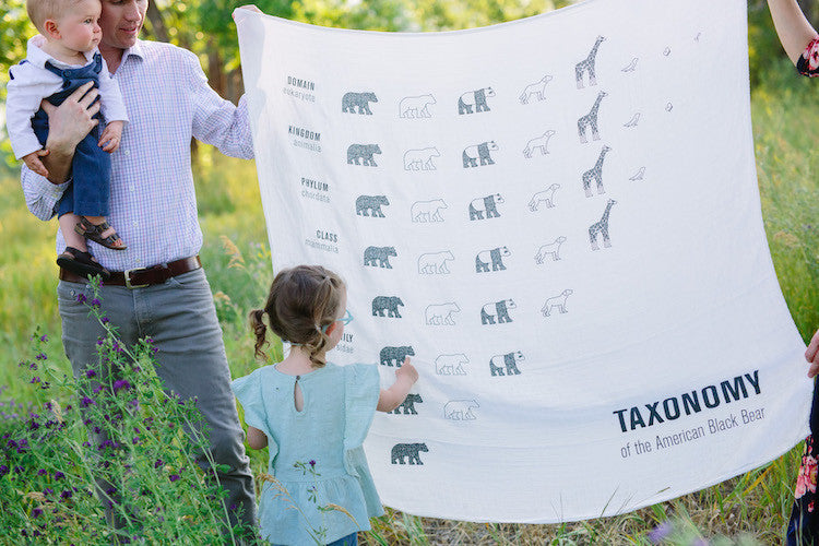 girl with taxonomy of the american black bear swaddle