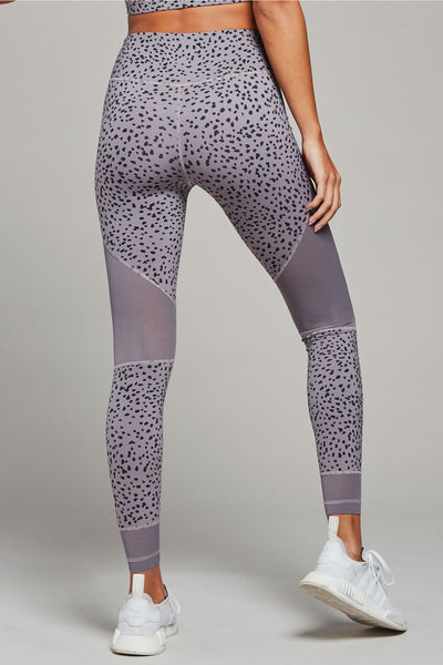 Addison Tight in Excalibur Speckle
