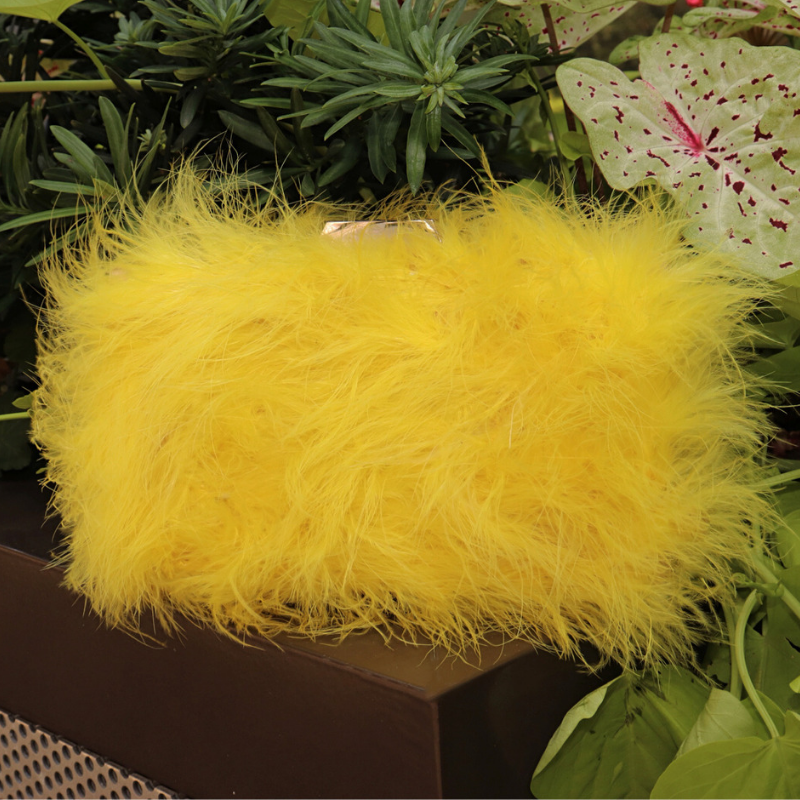 Ciara Box Clutch-Yellow