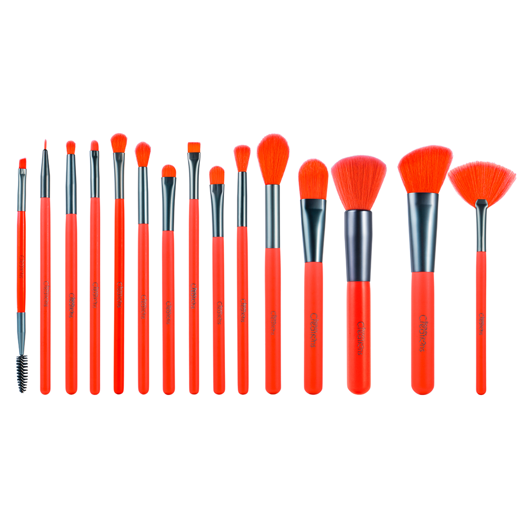BOSSY 15 PC BRUSH SET