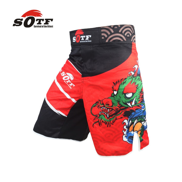 SOTF Dragon MMA Shorts
