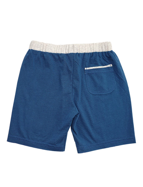 Stripy Blue Colour-block Shorts