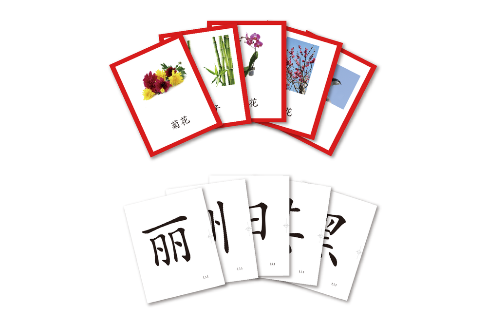 Better Immersion Flash Cards Set 中文游闪卡