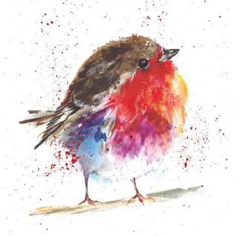 Fluffy Robin Christmas Cards - Pack of 10