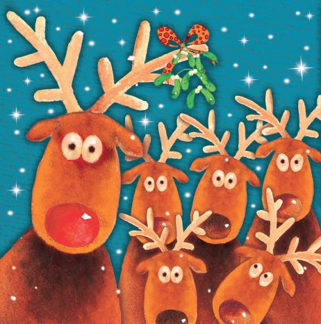 Reindeer Party Christmas Cards - Pack of 10